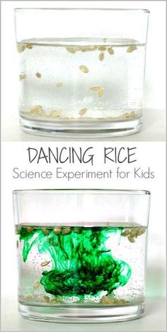 Cool Science Experiment for Kids: Explore chemical reactions by making rice dance using baking soda and vinegar! ~ BuggyandBuddy.com