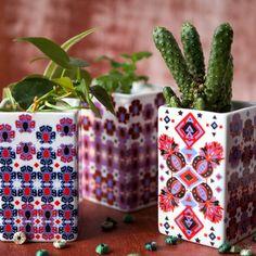 Image of La Maroma mini planters