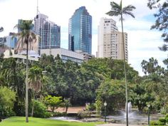 Brisbane botanical gardens, a beautiful city! #australia