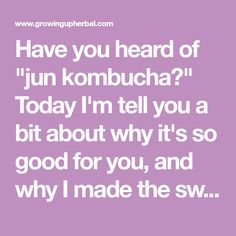 """Have you heard of """"jun kombucha?"""" Today I'm tell you a bit about why it's so good for you, and why I made the switch from regular kombucha to this variety!"""