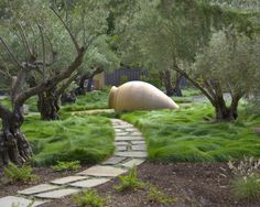 Really want to add more breezy, dancing grasses to our front yard, both tall and low to the ground like these.  Container Garden Design, Pictures, Remodel, Decor and Ideas - page 70