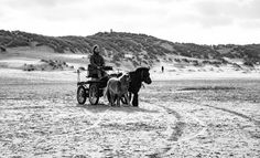 #lifesabeach #beach #horsecarriage #horses #terschelling #vscofilm #vsco #vscogrid #beachlovers #igersholland #contemporaryphotography #vscoexpo #monochrome #instadaily #documentaryphotography #top_bnw #contemporaryart #contemporary #nature #vscoedit #vscodaily #Loves_Netherlands #nothingisordinary_ #dutch_connextion #igfriends_valledaosta #wanderlust #vscocam #monolith_europe