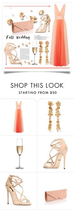 """Fall Wedding"" by conch-lady ❤ liked on Polyvore featuring Halston Heritage, Valentino, RogaÅ¡ka, Dolce&Gabbana, Christian Louboutin and fallwedding"