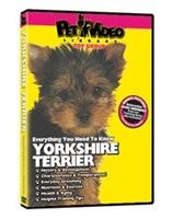 Yorkshire Terrier Video: Nothing beats the exceptional look and quality of our Yorkshire Terrier Video. Among the finest made, you will be…