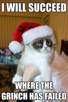 Grumpy Cat on the Grinch