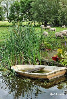 Boat and sheep pasture ...   Zaanse Schans
