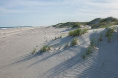 Portsmouth Island, south of Ocracoke Island, Outer Banks NC