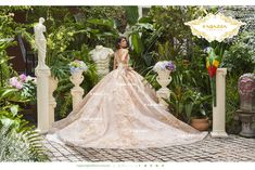 Get the beautiful Ivory and Apricot Quinceañera Dress by Ragazza and other amazing Ragazza quinceanera dresses on Mi Padrino. Verde Jade, Quince Dresses, Lace Embroidery, Quinceanera Dresses, Looking Stunning, Dress Codes, One Color, Bodice, Fashion Dresses
