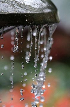 This photo links to 'apart and/ or together' theme because the idea of  wholeness and separation is represented by the rain changing into plentiful tiny drops.