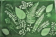 sun printing with leaves