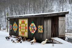 duck house and Barn Quilts. Barn Quilt Designs, Barn Quilt Patterns, Quilting Designs, Panel Quilts, Quilt Blocks, Painted Barn Quilts, Barn Signs, Barn Art, Square Quilt