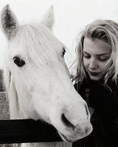 White horse #photography #photo