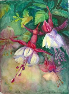 watercolor, by Joanna Lazuchiewicz