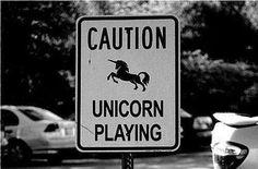 #unicorns