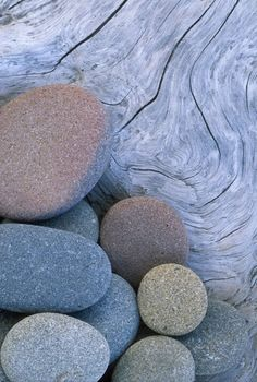 Beach Stones, Olympic NP, WA - Photograph at BetterPhoto.com