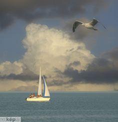 sailboat#sailin#eagle#clouds#water#lake#Balaton#Hungary