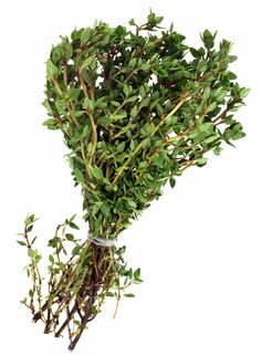 Thyme is one of the most versatile herbs, with various cultivars and flavors. Knowing how to dry thyme can help you preserve the delightful scent and flavor of this herb for easy home use. Click here for more.