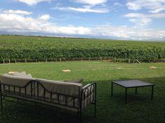 Vignole Andeluna dans la valle de Uco près de Mendoza en Argentine Mendoza, Uco, Blog Voyage, Eat Sleep, Outdoor Decor, Travel, Home, El Calafate, Buenos Aires