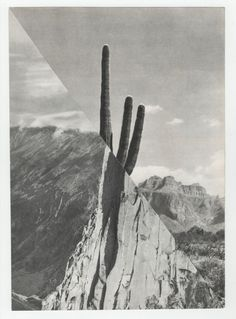 """Saatchi Art Artist: Mary Rasmussen; Paper Collage """"XXX"""""""