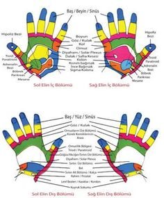 Turkish reflexology map visual result related to Turkish Ear Acupressure Points, Reflexology Massage, Lose Weight At Home, Alternative Medicine, Massage Therapy, Get In Shape, Plexus Products, Health Fitness, Weight Loss