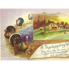 Turkeys on Parade and Country Farmhouse on Vintage Thanksgiving... ($4) ❤ liked on Polyvore featuring home, home decor, post card, turkish home decor and thanksgiving home decor