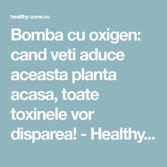Bomba cu oxigen: cand veti aduce aceasta planta acasa, toate toxinele vor disparea! - Healthy Zone Front National, Natural Remedies, Health Fitness, Healthy, Herb Garden, Pandora, House, Medicine, Houses