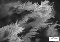 Carbon nanostructures grow under extreme particle bombardment