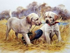 Mind Blowing Facts About Labrador Retrievers And Ideas. Amazing Facts About Labrador Retrievers And Ideas. Labrador Retrievers, Retriever Puppies, Dog Paintings, Cross Paintings, Lab Puppies, Cute Puppies, Animals And Pets, Cute Animals, Most Popular Dog Breeds