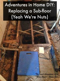 "The (mis)Adventures of a ""Born Again"" Farm Girl: Adventures in Home DIY: Replacing a Sub-floor (Yeah We're Nuts)"