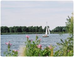 Vlietlanden, ligt midden in de Randstad langs de rivier de Vliet, tegenover Voorschoten en tussen Leiden en Leidschendam.