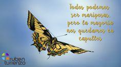 """""""Todos podemos ser mariposas, pero la mayoría nos quedamos en capullos"""" :)"""