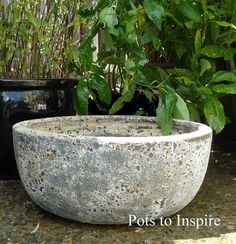 Large Atlantis Low Sala Bowl Pot   Woodside Garden Centre   Pots to Inspire Woodside Garden Centre, Moroccan Garden, Stone Bowl, Under The Ocean, Olive Tree, Atlantis, Garden Pots, Planter Pots, Pottery
