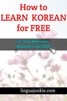 linguajunkie.com / How to LEARN  KOREAN for FREE / 10+ Easy Resources  Beginners will LOVE