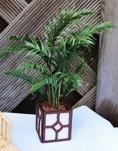 How to  make a miniature palm-type plant | Source: Titanic in Miniatuur