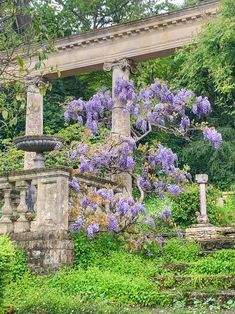 Halcyon Days in the Cotswolds: Part 2 - Private Newport Terrace Garden, Garden Planters, Building A Pergola, Italian Garden, Garden Stones, Dream Garden, Garden Inspiration, Newport, Beautiful Gardens