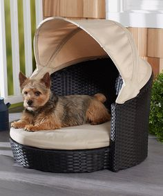 Look what I found on #zulily! Arbor Outdoor Pet Bed by Enchanted Home Pet #zulilyfinds