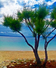 Ammouliani, Greece — by Maria Athanasopoulou. This island of Halkidiki, located across Ouranoupoli town, is a beautiful, tranditional place. The island size is...