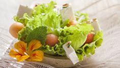 E porque o tempo está a aquecer hoje sugerimos Salada de frutos de Verão.
