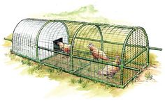 Build this predator-proof portable chicken coop for your backyard. This new and improved incarnation of the portable chicken coop is designed for three to four chickens and anybody can build it. From MOTHER EARTH NEWS magazine. Backyard Chicken Coop Plans, Raising Backyard Chickens, Keeping Chickens, Building A Chicken Coop, Diy Chicken Coop, Free Chickens, Chicken Ideas, Chicken Coop With Run, Backyard Coop
