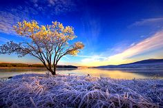 Sunrise Frost, Sutherland, Scotland