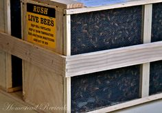 Really good beekeeping information