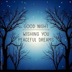 Good Night. Wishing you peaceful dreams