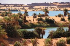 *🇹🇩 Lakes of Ounianga (Chad, North Africa) by Phil and Merillee Henderson Lake Chad, Desert Oasis, Future Travel, North Africa, Africa Travel, World Heritage Sites, Wonderful Places, Places To Go, Around The Worlds