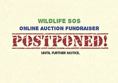 We regret to inform you that the ‪Online Auction‬ ‪‎Fundraiser‬ which was scheduled for 16th March 2015 stands ‪postponed‬ until further notice. We apologize for the inconvenience caused, but we have a special rescue in the works and we need to focus all of our efforts on it.  Thank you for your patience, we look forward to your support.