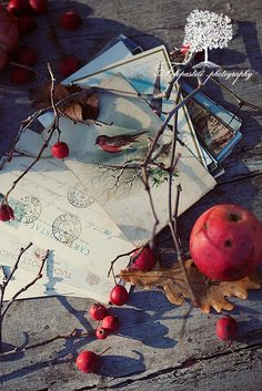 November... by loretoidas, via Flickr