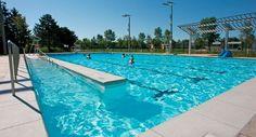 Estudio sobre la piscina de uso público y colectivo en España