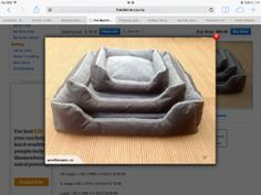 Ted Talks, Dog Bed, Buy Now, Sims, Baskets, Auction, Stuff To Buy, Animals, Ideas