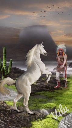 Domador de Cavalos - Virginia  Lucia