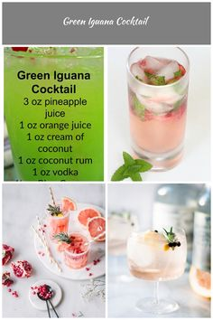 Green Iguana Cocktail ~ A juicy and delicious drink that is sure to be a favorite this Summer! drinks and cocktails Green Iguana Cocktail Green Iguana, Summer Drinks, Designer Wedding Dresses, Wedding Designs, Panna Cotta, Cocktails, Ethnic Recipes, Food, Summer Beverages