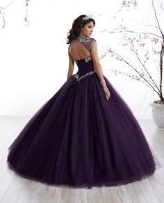 50132bc154dbbe Illusion A-line Quinceanera Dress by Fiesta Gowns 56324-House of Wu Fiesta  Gowns
